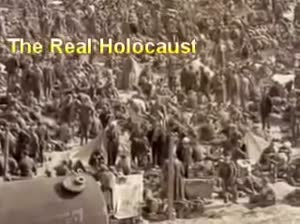 The Genocide of 1.7 Million German POW's in Eisenhowers Rhine Meadow Death Camps