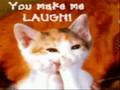 kitty kat dance song