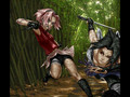 Sasuke's everything to Sakura