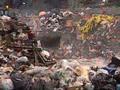 The New Industrial Revolution Teaser Trailer