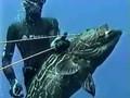 Submarine fishing