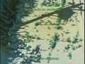 Yokohama Kaidashi Kikou OVA 2 [oretachi].avi