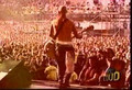 Rancid Live The Harder They Come