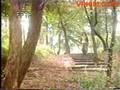 NuHiepSiTocTrang-01-01.wmv