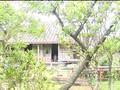 Konno Asami - Sweet Days - Natsufuku PB Making of
