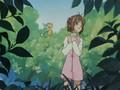 25 - La copia de Sakura