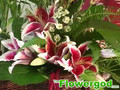 Tropical Basket Arrangement EP#50