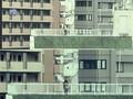 Enomoto Kurumi - Real
