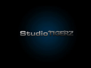 Studiotigerz - Summernight in heaven