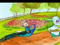 animacion final