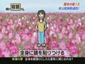 Shukudai Kun 54:  Baka Experiments