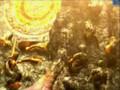 Final Fantasy 10(nightwish)