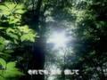 kokia-Minna No Uta Yuukyuu No Mori
