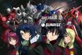 Gundam Seed Destiny Opening 1 Remix - Pink Rose