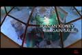 Iranian Kidney Bargain Sale trailer