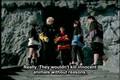 Hyakujuu Sentai Gaoranger - 02