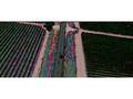 Farmhouse - Trailer