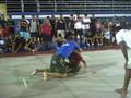 Marcelo Garcia vs Renato Sobral