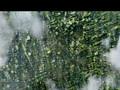Bionic Commando trailer 1