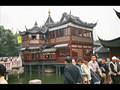 Shanghai Sensations