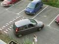 Bad Driver!