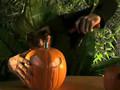 Pumpkin Bong!