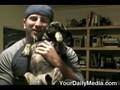 Pug Pisses In Mans Face!