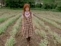 Morning Musume Aruiteru