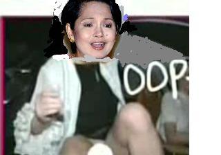 Riza Santos , Celebrity