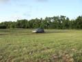 Episode 185: Nissan GT-R