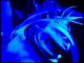 Black Light Theater Wow Show