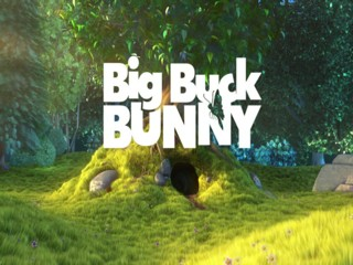 Big_Buck_Bunny_HiRes_Surround.divx.avi