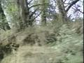 Alex Jones - Dark Secrets Inside Bohemian Grove - Directors Cut [2005] DVD-Rip CD2.avi