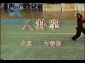 Chinese wushu-Baguazhang