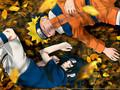 Naruto V.S. Sasuke