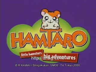 Hamtaro: Little Hamsters Big Adventures Commecial