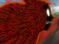 Naruto Shippuuden Kyuubi AMV - Animal I Have Become