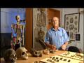 Homo Sapiens [1v2] Die Geburt des neuen Menschen