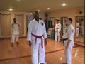 Harlem Karate Institute