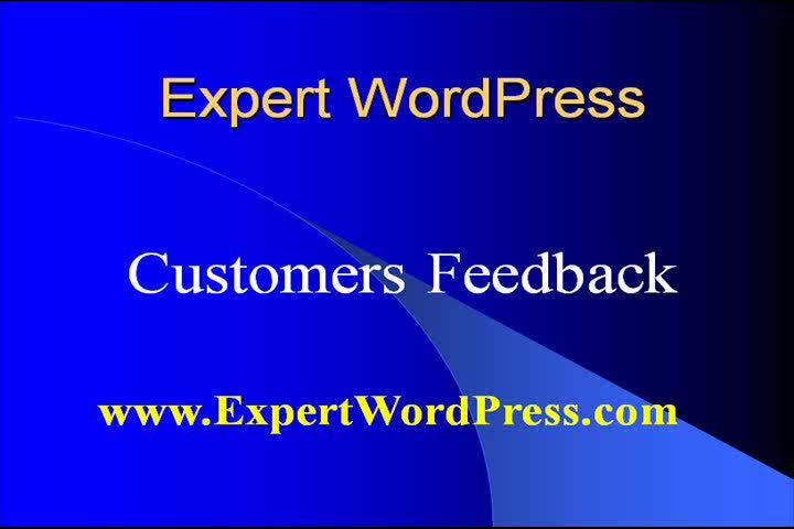 Expert WordPress Feedback