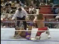 Marty Janetty vs. Rick Martel