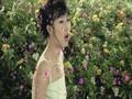 Park Ki-Young - Nabi (Butterfly)