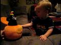 Cole's pumpkin part II
