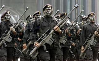 Video Completo Desfile Militar Ejercito Mexicano -  Independencia Mexico 16 Septiembre 2008 - Zocalo Mexico DF