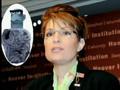 Sarah Palin Calls Hillary Clinton
