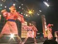 Sakuragumi Koen ~ Sakura Saku Concert