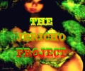 THE JERICHO PROJECT II