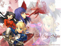 fate stay night disillusion
