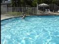 Clarke's underwater swim