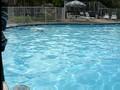 Sean's underwater swim